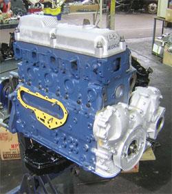 blumotortall